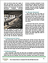 0000061054 Word Template - Page 4