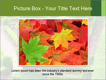 0000061060 PowerPoint Template - Slide 16