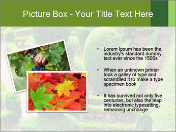 0000061060 PowerPoint Template - Slide 20