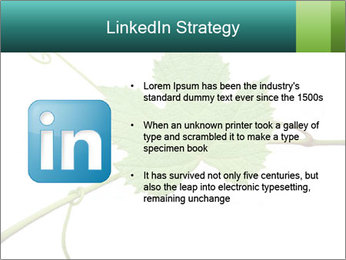 0000061080 PowerPoint Templates - Slide 12