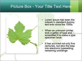 0000061080 PowerPoint Templates - Slide 13