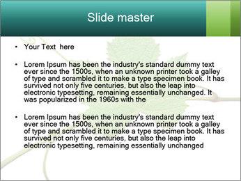 0000061080 PowerPoint Templates - Slide 2