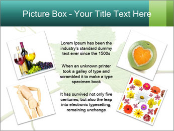 0000061080 PowerPoint Templates - Slide 24
