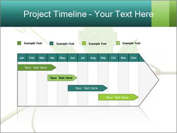 0000061080 PowerPoint Templates - Slide 25