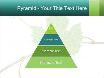 0000061080 PowerPoint Templates - Slide 30