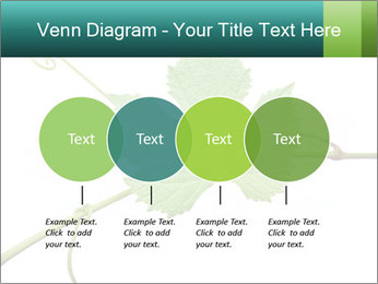 0000061080 PowerPoint Templates - Slide 32
