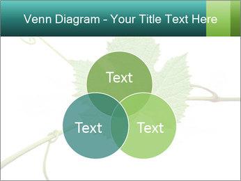 0000061080 PowerPoint Templates - Slide 33