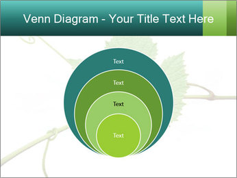 0000061080 PowerPoint Templates - Slide 34