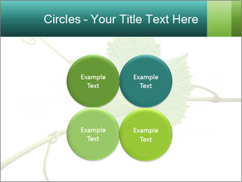 0000061080 PowerPoint Templates - Slide 38