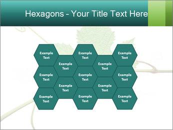 0000061080 PowerPoint Templates - Slide 44