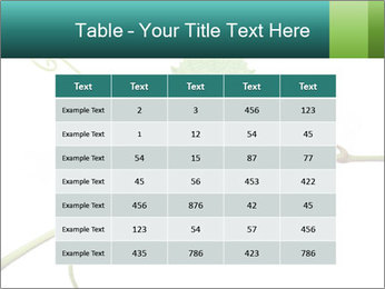0000061080 PowerPoint Templates - Slide 55