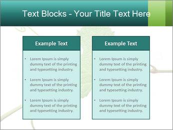0000061080 PowerPoint Templates - Slide 57
