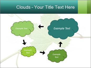 0000061080 PowerPoint Templates - Slide 72