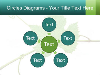 0000061080 PowerPoint Templates - Slide 78