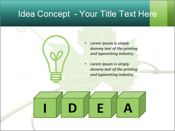 0000061080 PowerPoint Templates - Slide 80