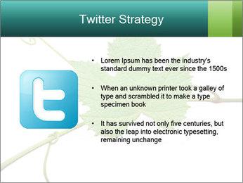 0000061080 PowerPoint Templates - Slide 9