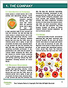 0000061080 Word Template - Page 3