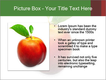0000061081 PowerPoint Templates - Slide 13