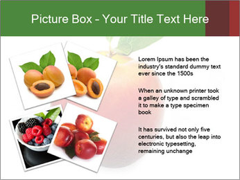 0000061081 PowerPoint Templates - Slide 23