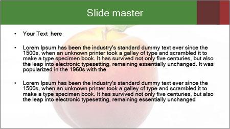 0000061081 PowerPoint Template - Slide 2