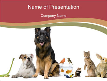 0000061083 PowerPoint Template - Slide 1