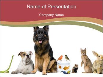0000061083 PowerPoint Templates - Slide 1