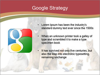 0000061083 PowerPoint Template - Slide 10