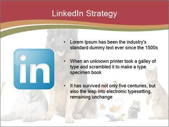 0000061083 PowerPoint Templates - Slide 12