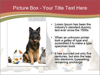 0000061083 PowerPoint Template - Slide 13