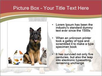 0000061083 PowerPoint Templates - Slide 13