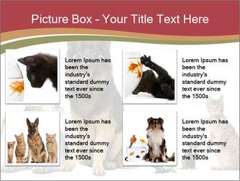 0000061083 PowerPoint Templates - Slide 14
