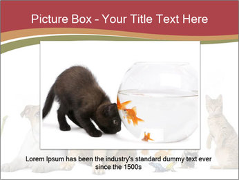 0000061083 PowerPoint Template - Slide 15
