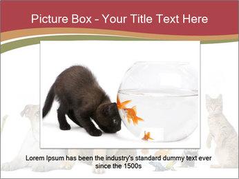 0000061083 PowerPoint Templates - Slide 15