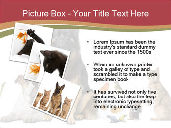 0000061083 PowerPoint Templates - Slide 17