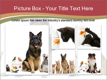 0000061083 PowerPoint Templates - Slide 19