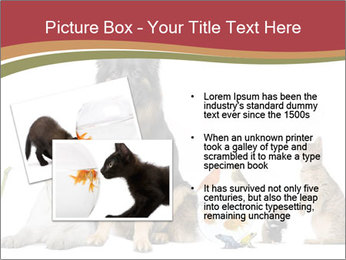0000061083 PowerPoint Template - Slide 20