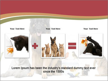 0000061083 PowerPoint Templates - Slide 22