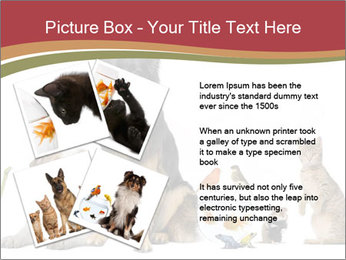 0000061083 PowerPoint Templates - Slide 23