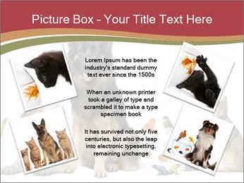 0000061083 PowerPoint Templates - Slide 24