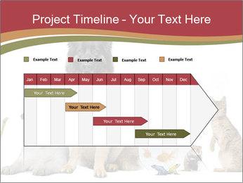 0000061083 PowerPoint Templates - Slide 25