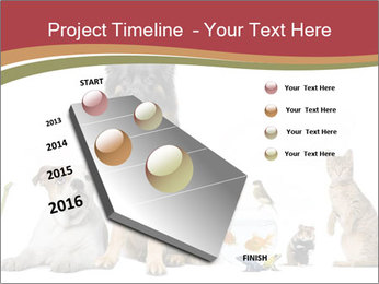 0000061083 PowerPoint Template - Slide 26