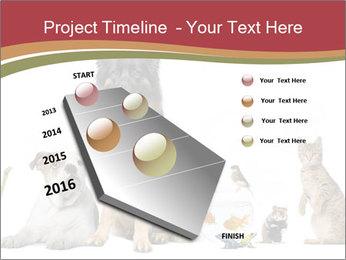 0000061083 PowerPoint Templates - Slide 26