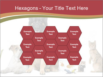 0000061083 PowerPoint Templates - Slide 44