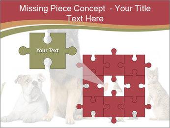 0000061083 PowerPoint Templates - Slide 45
