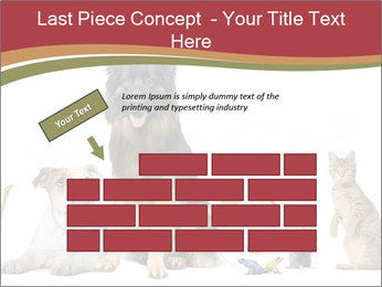 0000061083 PowerPoint Templates - Slide 46