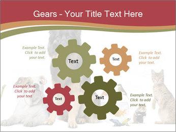 0000061083 PowerPoint Templates - Slide 47