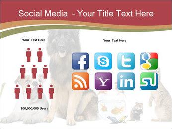 0000061083 PowerPoint Templates - Slide 5