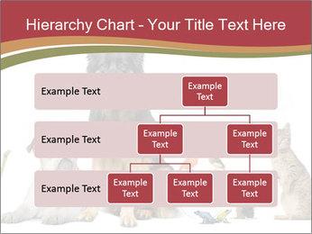 0000061083 PowerPoint Templates - Slide 67