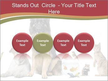 0000061083 PowerPoint Templates - Slide 76