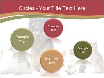 0000061083 PowerPoint Templates - Slide 77